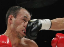muay thai, knockout muay