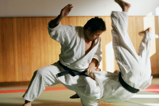 Players of Judo, throwing techniques