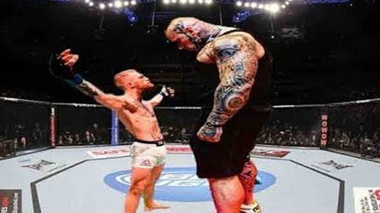 Ufc Schwergewicht Champion